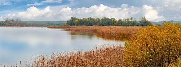 Trzcinowe zarośla nad rzeką jesienią przy dobrej pogodzie, odbijające chmury w rzece
