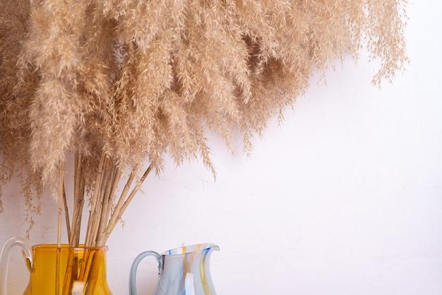 Trzciny trawy pampasowej w szklanym wazonie w pobliżu białej ściany, artystyczna dekoracja wnętrz domu
