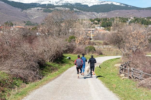 Trzech biegaczy odwróconych plecami biegających po górskim szlaku
