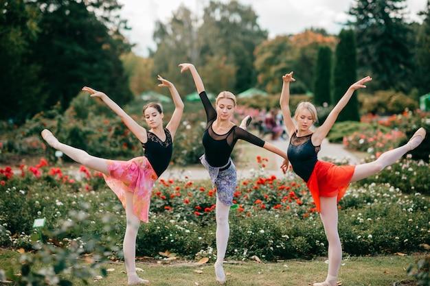 Trzech elastycznych tancerzy baletowych balansujących w parku