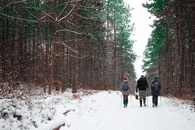 Trzech przyjaciół spaceruje po bezdrożach