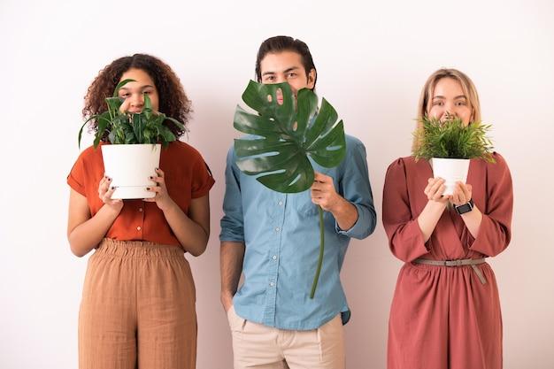 Trzech szczęśliwych młodych, międzykulturowych przyjaciół w codziennym stroju, stojących rzędami wzdłuż ściany, trzymając za twarze zielone rośliny domowe