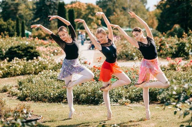 Trzej wdzięczni tancerze baletowi pozuje i tanczy w lato pięknym parku