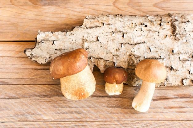 Trzy białe grzyby leśne na tle kory drzewa na drewnianym tle.