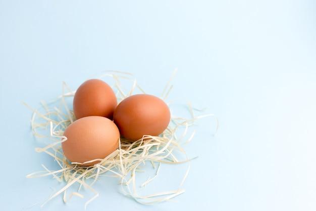 Trzy brązowe jaja kurze w małym gnieździe na jasnoniebieskim.