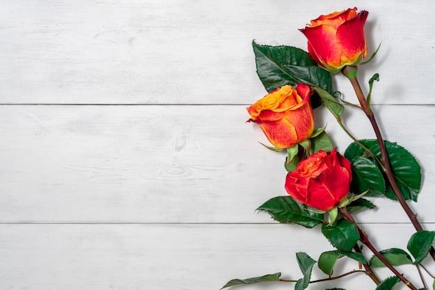 Trzy czerwone i żółte róże na jasnym tle drewniane z miejsca na kopię. układ do projektowania