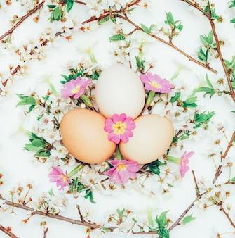 Trzy jaja kurze w gałęzi kwitnących i kwiaty pierwiosnków na białym. zbliżenie, widok z góry. wielkanoc, wiosna