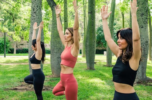 Trzy kobiety podczas sesji jogi w parku