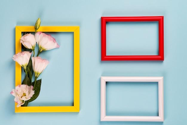 Trzy kolorowe ramki z kwiatami