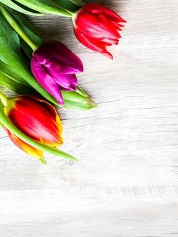 Trzy kolorowe tulipany na drewnianym tle. pocztówka z zaproszeniem na dzień matki lub międzynarodowy dzień kobiet. minimalistyczny jasny kwiat do reklamy lub promocji. wiosenne kwiaty.