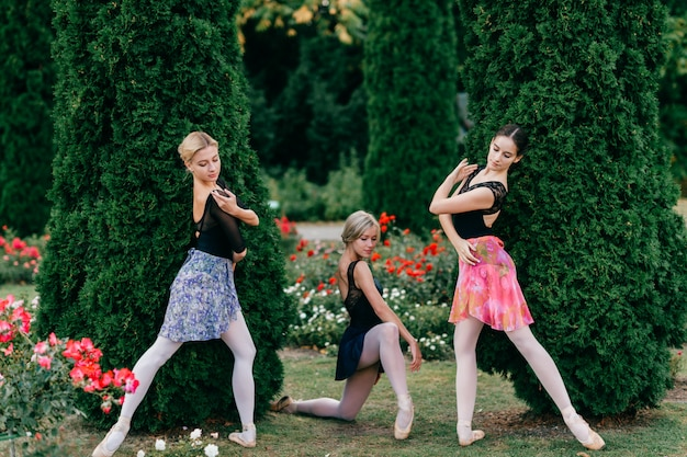 Trzy nowożytnego żeńskiego tancerza baletowego pozuje w lato parku.