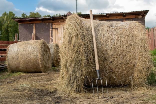 Trzy ogromne stosy świeżego siana dla zwierząt gospodarskich i widły przy jednym z nich na stodole w wiejskim środowisku