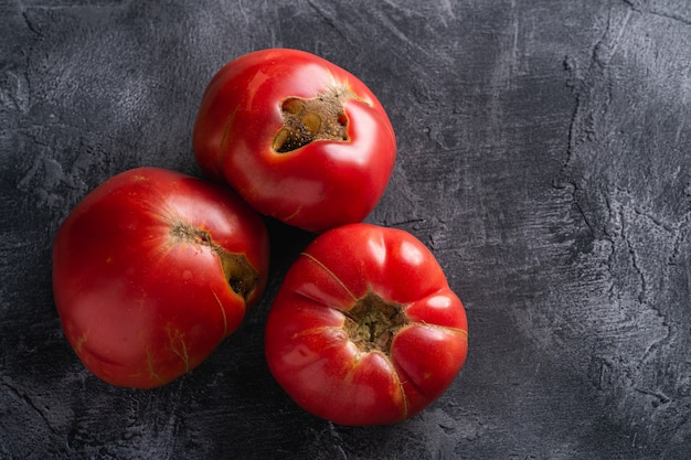 Trzy pomidory heirloom