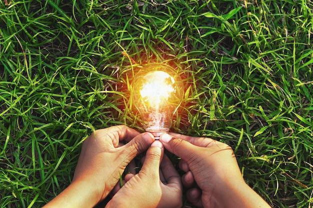 Trzy ręki mienia żarówka na trawie. koncepcja ekologiczna energia energetyczna w przyrodzie