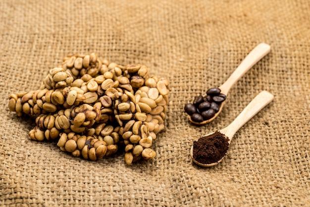 Trzy stany ziaren kawy kopi luwak