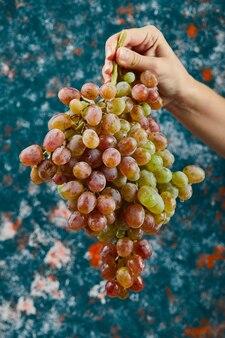 Trzyma kilka czerwonych winogron na niebieskiej powierzchni