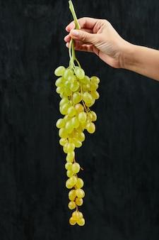 Trzyma kiść białych winogron na czarnym tle. wysokiej jakości zdjęcie