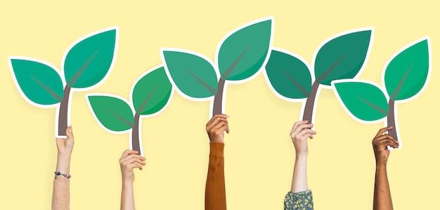 Trzymając się za ręce roślin pozostawia clipart