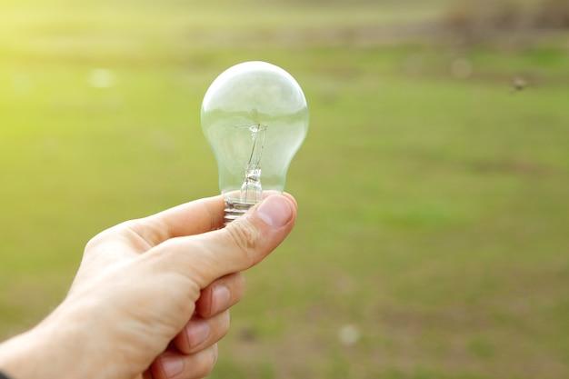 Trzymanie lampy na scenie przyrody w ciągu dnia