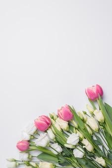 Tulipany i róże na bielu