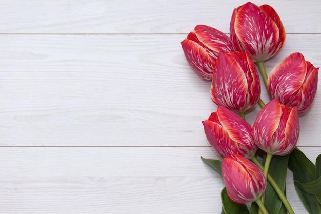 Tulipany kwiatowe. bukiet pięć żółtych czerwonych pasiastych tulipanów na białej drewnianej podłoga.