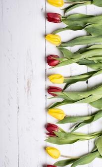 Tulipany na białych drewnianych deskach eves
