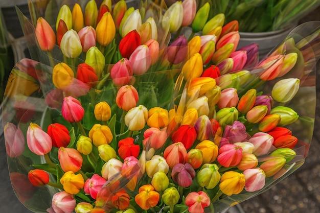 Tulipany na kwiaciarni, targ.