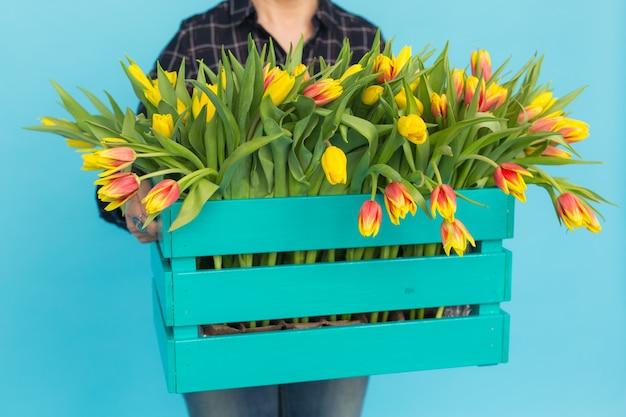 Tulipany w pudełku na niebieskiej ścianie na rękach kobiet.