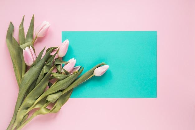 Tulipany z pustym papierem na różowym stole