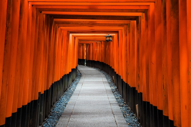 Tunel bramy torii w świątyni fushimi inari