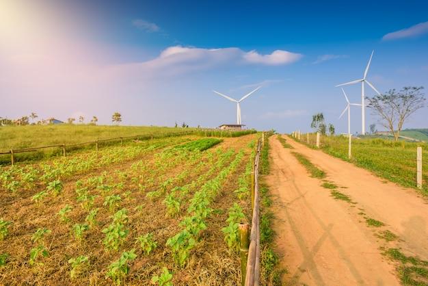 Turbina wiatrakowa do produkcji elektrycznej w khao kho, petchaboon, tajlandia