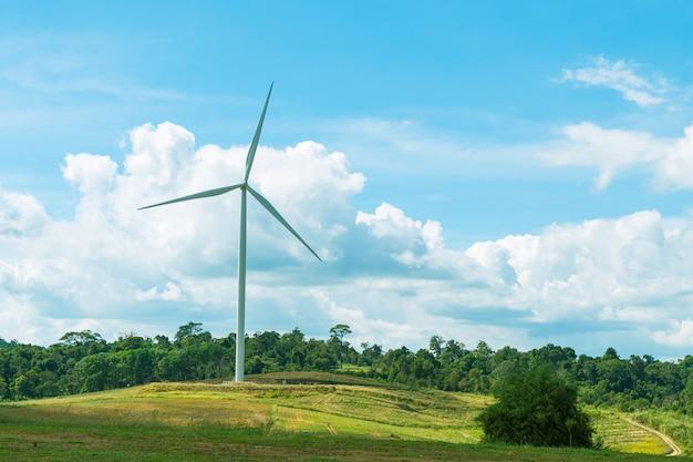 Turbiny wiatrowe na łące