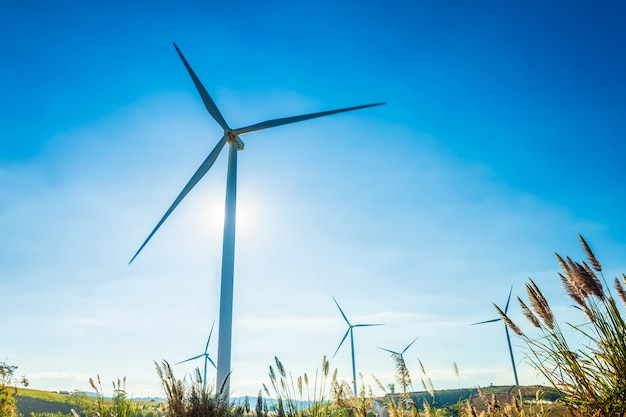 Turbiny wiatrowe na wzgórzu w parku khao kho w tajlandii. czysta energia, ekologiczna energia, zielona energia.