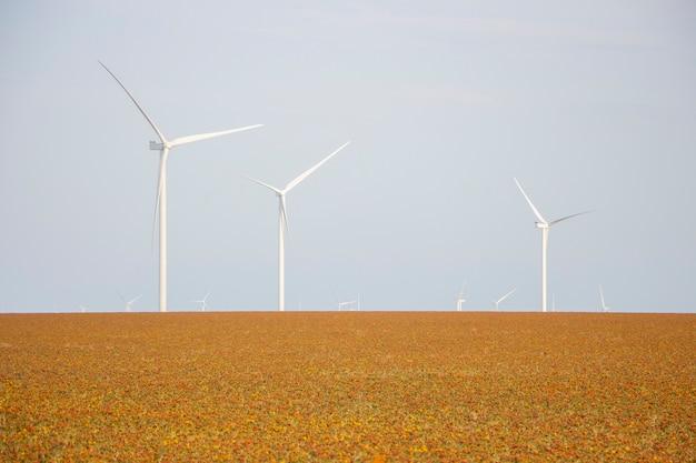 Turbiny wiatrowe na zachmurzonym niebie