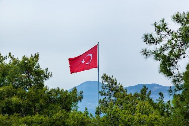 Turecka flaga narodowa pomiędzy różnymi drzewami iglastymi na tle gór w alanyi.
