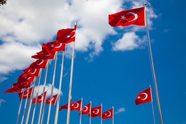 Tureckie flagi z błękitnym niebem w tle w parku w słoneczny dzień.