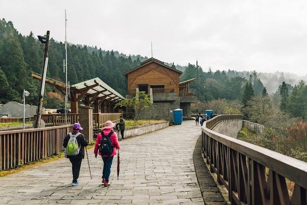 Turyści idący do mglistego lasu w strefie rekreacyjnej narodowego lasu alishan.
