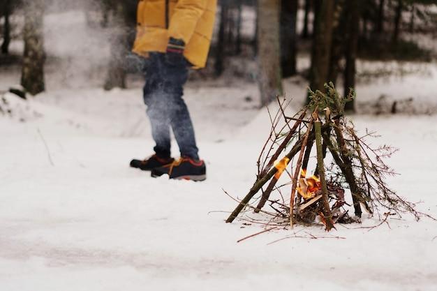 Turyści na postoju. preparat do rozpalania ogniska z gałęzi świerkowych. zimowy las