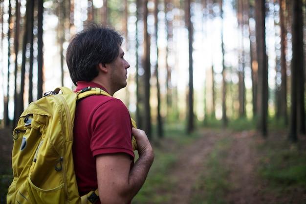 Turysta - mężczyzna piesze wędrówki w lesie. męski wycieczkowicz patrzeje boczny odprowadzenie w lesie