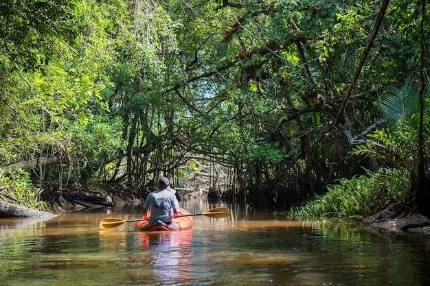 Turysta na kajaku odwiedzić małą amazonkę lub klong sang nae kanał wzdłuż rzeki w phang nga w tajlandii.