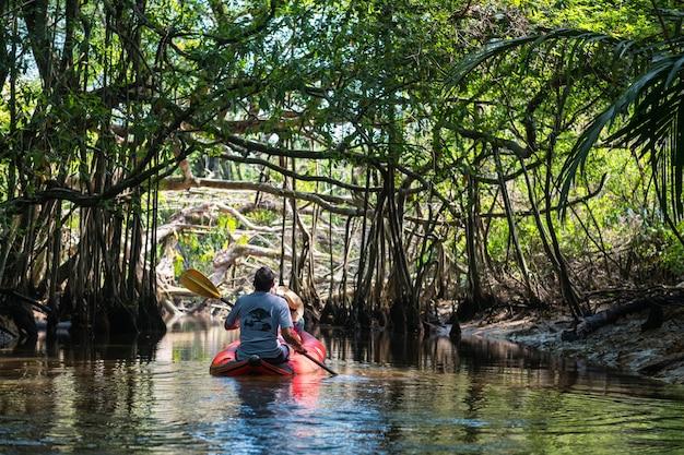 Turysta na łodzi kajakowej odwiedza little amazon lub sang nae canal, aby zobaczyć ukryty las banyan tree, ptak, wąż, varanus salvator wzdłuż rzeki w phang nga w tajlandii. słynna podróż na łonie natury.