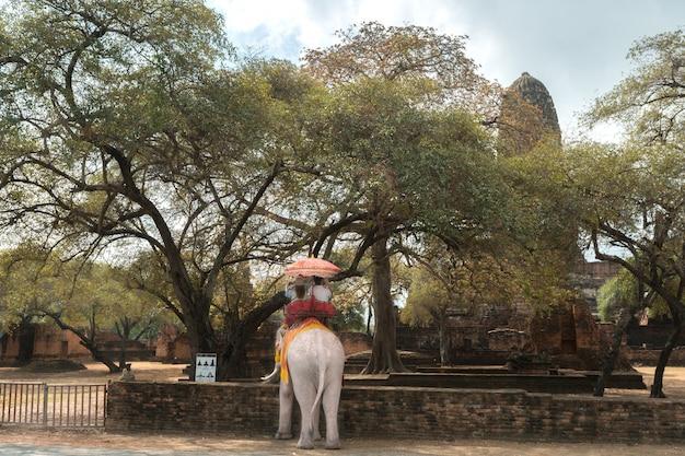 Turysta na słoń zwiedza w ayutthaya dziejowym parku, ayutthaya, tajlandia