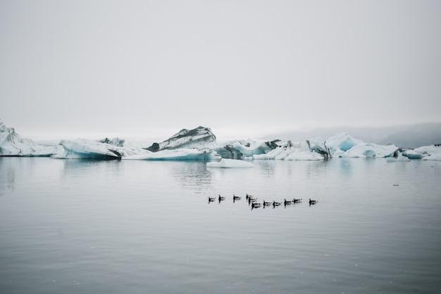 Turysta obserwuje lodowiec w wodzie na islandii