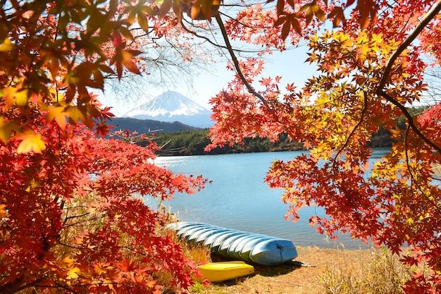 Turysta podziwiający mt. fuji jesienią, kolorowa jesień i góra fuji z porankiem i czerwonymi liśćmi nad jeziorem kawaguchiko to jedno z najlepszych miejsc w japonii