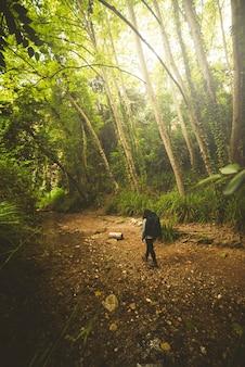 Turysta spacerujący po lesie wzdłuż rzeki.