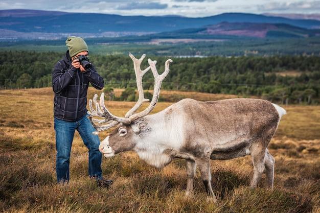Turysta w szkocji biorąc zdjęcia jelenia