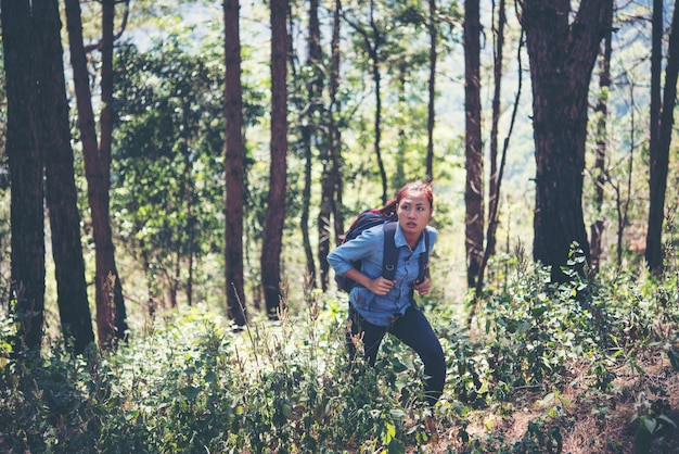 Turysta z plecakiem spaceru przez las, aby przejść górę górskich.