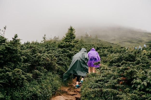 Turystów wędrujących w górę foogy góry. trekking górski. mężczyźni z plecakami na wędrówce.