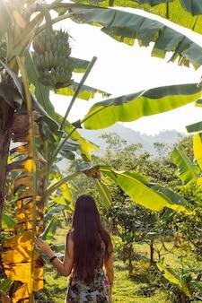 Turystyczna młoda kobieta w lecie odziewa na drzewko palmowe lesie w tajlandia. zdrowe zielone banany.