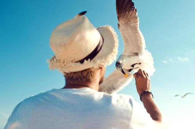 Turystyczny mężczyzna karmiący mewę na plaży na tle błękitnego, czystego nieba